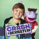 Crash & Bernstein: Undercover Crash